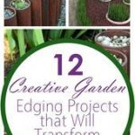 12 Creative Garden Edging Projects that Will Transform Your Yard
