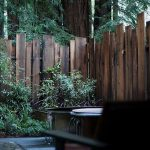 39 Low-Cost DIY Privacy Fence Ideas