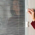 Doors with blinds inside the (soundproof) glass.  A rental I visit annually has ...