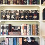 That's my dream to have a book case with novels and Harry Potter