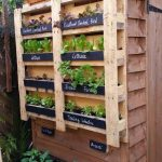 Vertical garden made with pallet